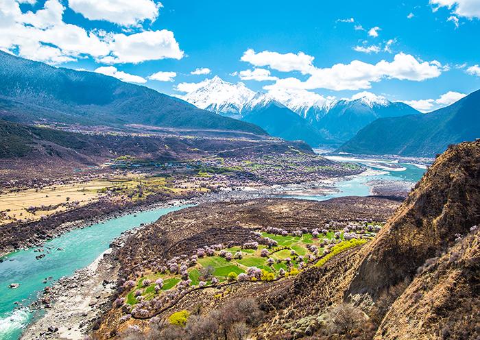 西藏旅游最佳时间来看林芝桃花